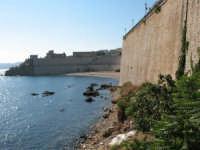 Castellammare  - Castellammare del golfo (465 clic)