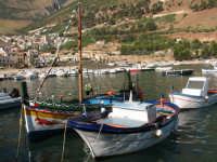 Barche al porto   - Castellammare del golfo (577 clic)