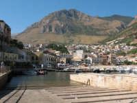 Una bella vista dal monte Inici e il porto  - Castellammare del golfo (543 clic)