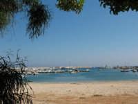 La spiaggetta del porto   - Castellammare del golfo (511 clic)