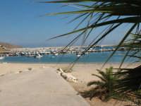 La spiaggetta del porto   - Castellammare del golfo (529 clic)