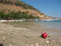 La spiaggetta del porto   - Castellammare del golfo (538 clic)