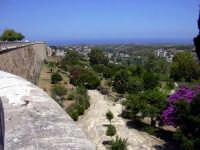 Vista delle campagne di Alcamo  - Alcamo (1080 clic)