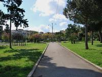 La villa Piazza della Repubblica   - Alcamo (678 clic)