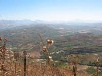 Vista panoramica dal monte Bonifato  - Alcamo (678 clic)