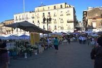 Per le vie di Catania (743 clic)
