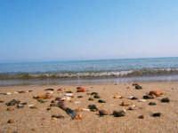 La quiete del mare  - Castellammare del golfo (1460 clic)