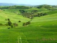 paesaggio  - San giacomo (3641 clic)