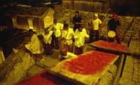 spettacolo canto della terra che gira-agosto 2002 spettacolo canto della terra che gira-agosto 2002  - Modica (3089 clic)
