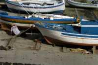 isola di linosa  - Linosa (3620 clic)