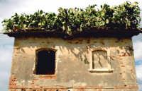 casa di ficupali  - Siracusa (2868 clic)