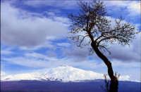 Etna--vista da Troina (EN)  - Troina (4955 clic)