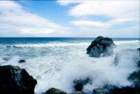 Mare in tempesta  - Mongiove (6149 clic)