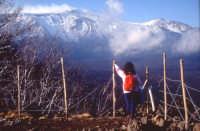Vista sulla Valle del Bove  - Etna (3306 clic)