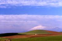 Franchetto - Campi con lo sfondo dell'Etna  - Etna (3382 clic)