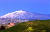 Campi con lo sfondo dell'Etna  - Enna (9103 clic)