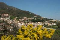 Montagnareale - Panorama (1) - Foto di Giuseppe Accordino  - Montagnareale (3571 clic)