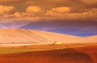 I colori dei campi  - Enna (7771 clic)