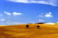 I colori dei campi ENNA GIUSEPPE ACCORDINO