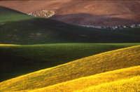 Forme e colori dei campi  - Paternò (1453 clic)