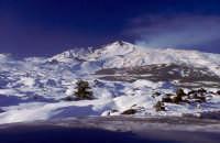 Inverno sull'Etna -Foto 20 -  Foto di Giuseppe Accordino  - Etna (3085 clic)