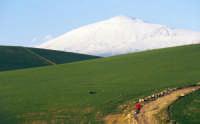 Forme e colori -sfondo Etna - foto 50 - Foto di Giuseppe Accordino  - Etna (4577 clic)