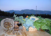 Lumache da gastronomia. Azienda agricola Lumaca di Avola  - Avola (4147 clic)
