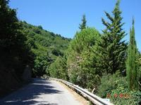 strada per il paese  - San salvatore di fitalia (3839 clic)