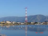 Lago di Ganzirri e piloni....  - Ganzirri (7782 clic)