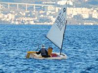 Vela Vela sullo stretto di Messina  - Messina (2102 clic)