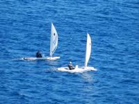 Vela Vela sullo stretto di Messina  - Messina (2092 clic)