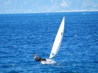 Vela Vela sullo stretto di Messina  - Messina (2607 clic)