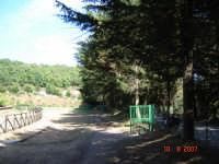 Ippodromo   - Castell'umberto (3973 clic)