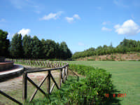 Ippodromo   - Castell'umberto (4343 clic)