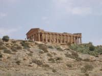 valle dei templi.   - Agrigento (2816 clic)