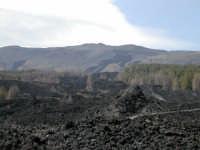 nuova colata  - Etna (2416 clic)