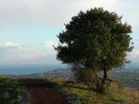 Panorama da Monte Serra  - Viagrande (2915 clic)