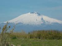 l'Etna vista dalle parti della foce del Simeto  - Catania (2215 clic)