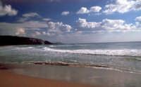 Spiaggia  - Torre salsa (4624 clic)