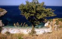 La riserva dello zingaro  - San vito lo capo (4527 clic)