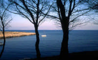Il Mare di Levanzo  - Levanzo (2541 clic)