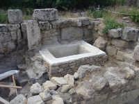 terme di nuovo rinvenimento nella parte bassa dell'acropoli  - Selinunte (2548 clic)