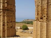 scorcio dell'Acropoli di Selinunte vista dal tempio principale  - Selinunte (2780 clic)