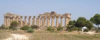 tempio principale di selinunte  - Selinunte (2416 clic)