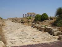 strada in pietra che conduce alla cittadella, distrutta, si narra, da uno tsunami.  - Selinunte (2580 clic)