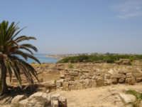 veduta della lunghissima spiaggia di triscina di selinunte, dalla vetta della cittadella.  - Selinunte (3674 clic)