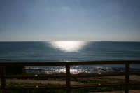 vista del mare d'inverno dalla terrazza di selinunte  - Selinunte (4098 clic)