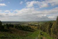 veduta della valle in prossimità della diga Delia di Castelvetrano CASTELVETRANO gaspare arimondi