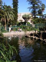 Il laghetto di Villa d'Orleans. Sullo sfondo Palazzo dei Normanni PALERMO Gabriella Alù