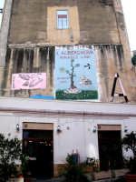 Murales nel quartiere dell'Albergheria  - Palermo (5375 clic)